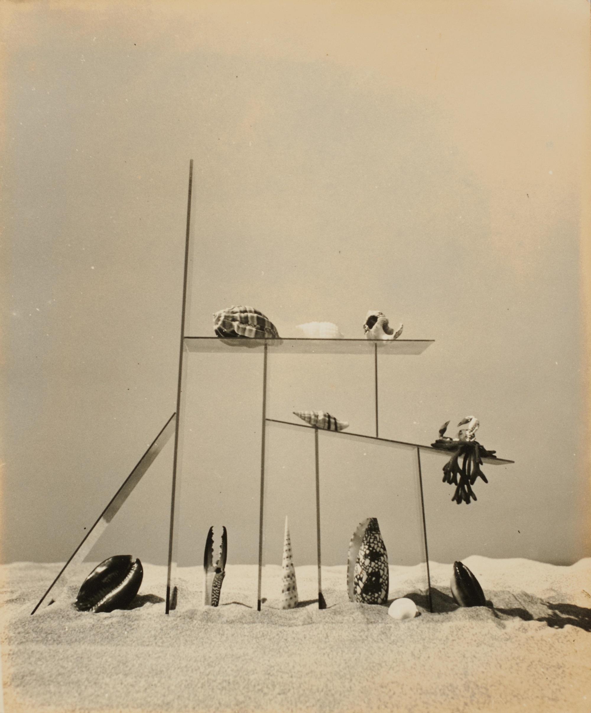 久野久《 海のショーウィンドウ》 1938年 個人蔵