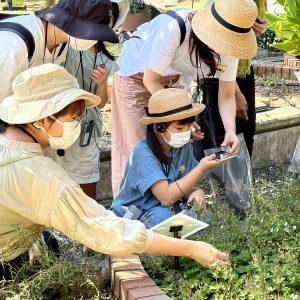福岡市植物園で行った同ワークショップの様子